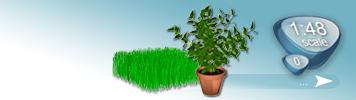 Sonstige Pflanzen für Spur 0