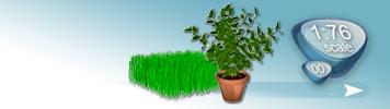 Sonstige Pflanzen für Spur 00