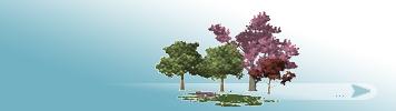Bäume & Pflanzen