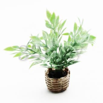 Dollhouse plants for mini garden